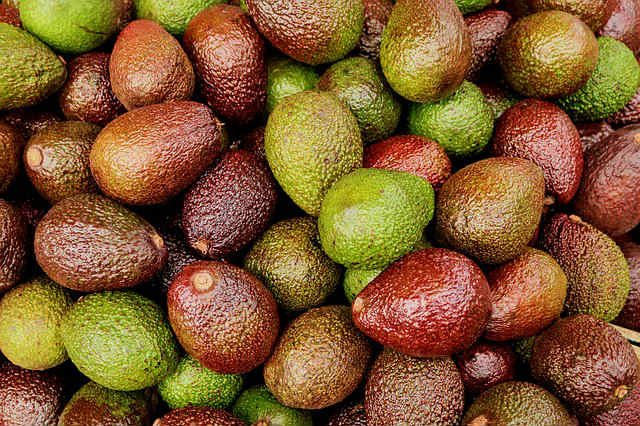 aguacates