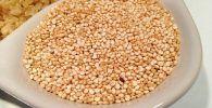 propiedades de la quinoa