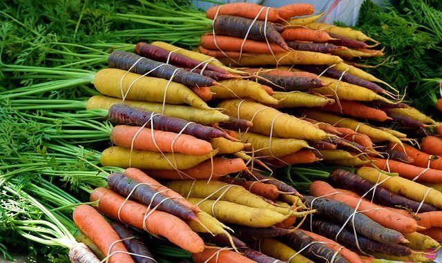 zanahoria beneficios